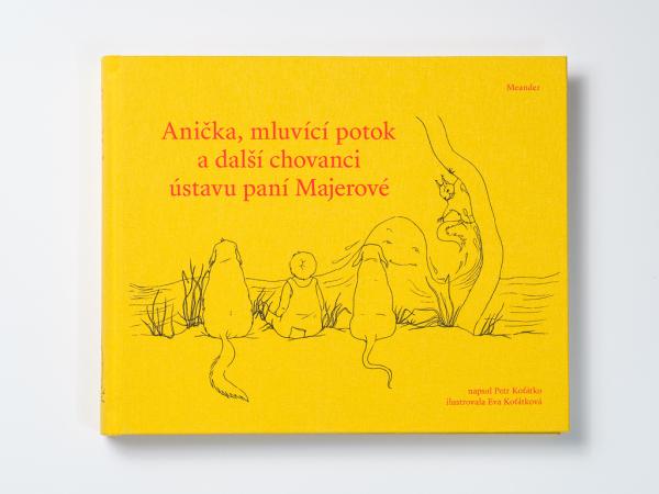 Anička, mluvící potok a další chovanci ústavu paní Majerové