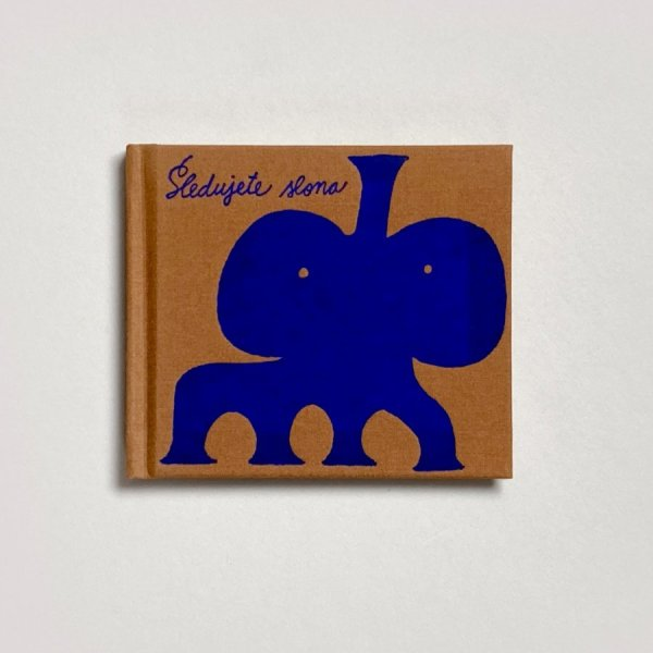 Sledujete slona